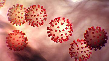 51 с коронавирус у нас за последното денонощие