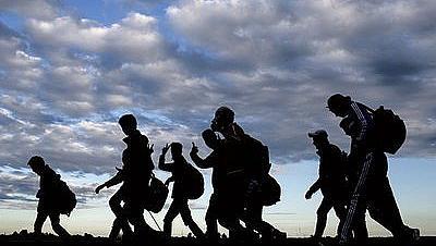 Над 50 нелегални мигранти задържани край Любимец