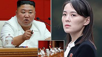 Дейли Мейл : Ким Чен Ун в кома