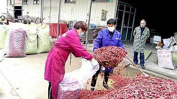 Китай: Пазарът в Ухан не е източникът на COVID-19