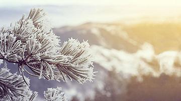 Обилен сняг и затворени пътища
