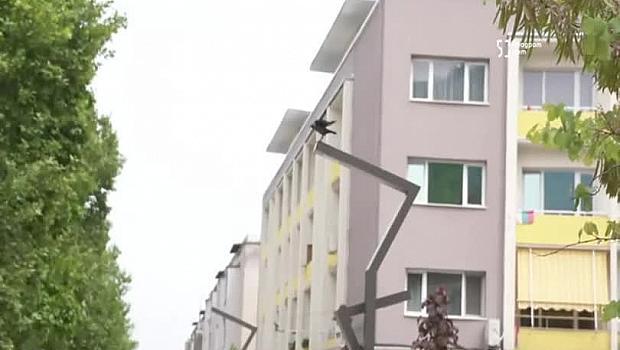 Враца, ЧЕСТИТ ПРАЗНИК